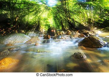 montagne, rivière, bois