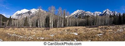 montagne rocciose, in, banff parco nazionale