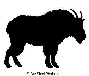 montagne, silhouette, chèvre