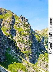 montagne, tatras, pologne, jour ensoleillé, sommet