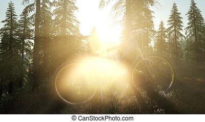 montagne, vélo, coucher soleil, forêt