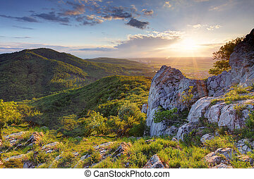 montagne, vert, coucher soleil