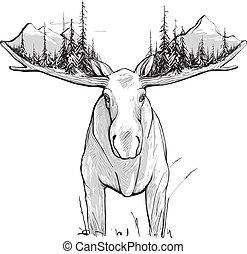 montagnes, élan, forêt, illustration