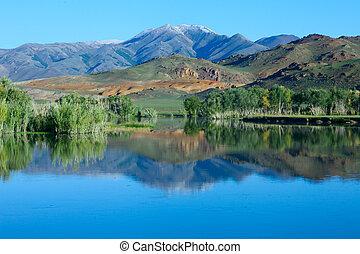 montagnes, arbres réflexion