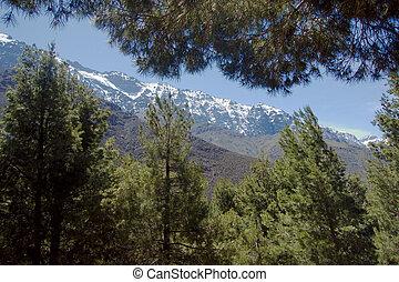 montagnes atlas