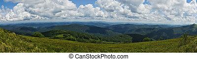 montagnes, bieszczady, vert