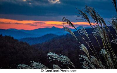 montagnes bleues, arête, crêtes, couches, sur, gamme, coucher soleil