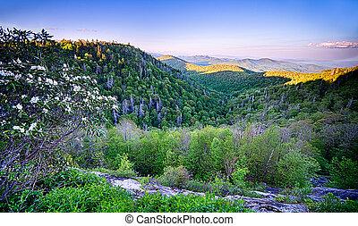 montagnes bleues, arête, scénique, enfumé, printemps, appalachians, route express