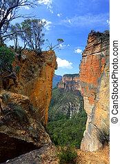 montagnes bleues, tête, australie, burramoko, rocher,...