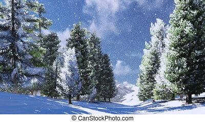 montagnes, bois, pin, neigeux