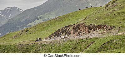 montagnes, buggy, route, conduite, extrême