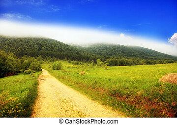 montagnes, collines, pologne, bieszczady, brumeux, chemin, paysage