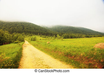 montagnes, collines, pologne, bieszczady, sentier, paysage