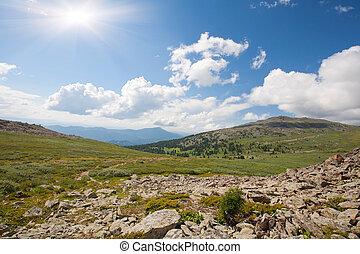 montagnes, ensoleillé, altai, jour, forêt, sibérie