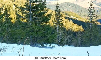 montagnes, hiver, neigeux