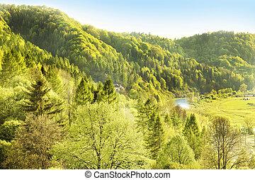 montagnes, idyllique, paysage, polonais