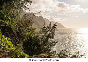 montagnes, kalalau, pali, vu, kauai, rivage, nord, piste, na, négliger