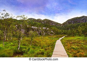 montagnes, lysefjord, -, fjord, manière, norvège, preikestolen, falaise