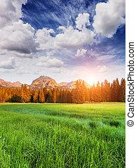 montagnes, merveilleux, vue