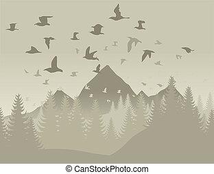 montagnes, oiseaux