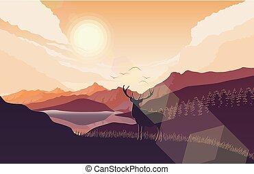 montagnes, paysage, cerf, collines, coucher soleil