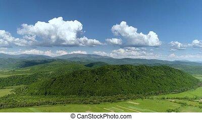 montagnes, river., above., carpathians., forêt verte, ...