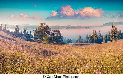 montagnes, scène, coloré, matin
