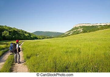 montagnes., touriste, homme