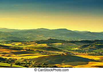 Montalcino Amiata countryside panoramic view, vineyard and green fields. Tuscany, Italy