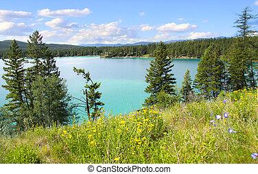 montana , λίμνη , χιτώνιο του στήθους