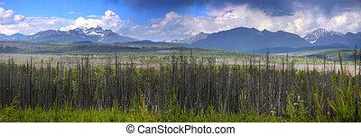 Montana landscape - Panoramic view of scenic Montana...