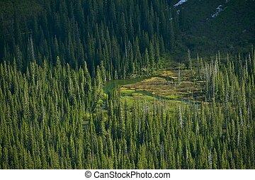 montana, regione selvaggia