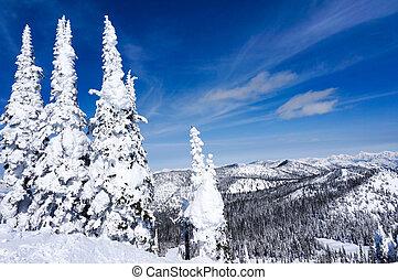montana, whitefish, paisagem, inverno