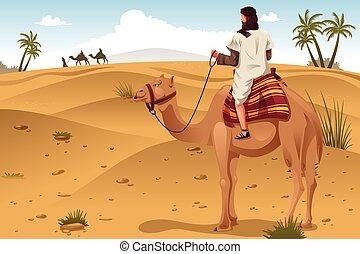 montando, árabe, deserto, camelos