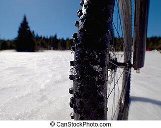 montando, a, bicicleta montanha, em, a, nevado, inverno, forest., loucos, adventure.