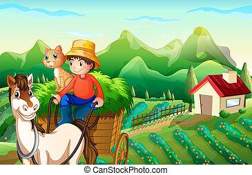 montando, carro cavalo, agricultor