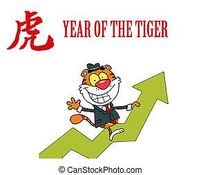 montando, feliz, sucesso, tiger