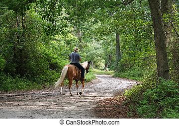 montando, homem, horseback