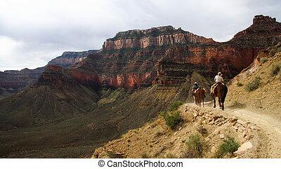 montando, horseback