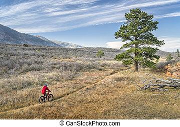 montando, um, gorda, bicicleta, em, colorado, foothills