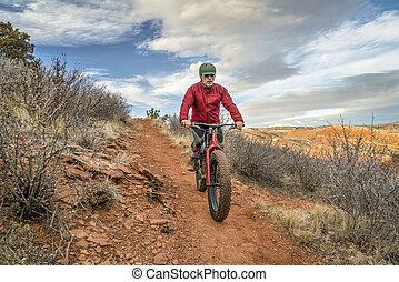 montando, um, gorda, bicicleta, ligado, colorado, foothills
