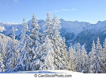 montanha, áustria, paisagem., schladming.