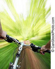 montanha andando bicicleta, em, a, floresta