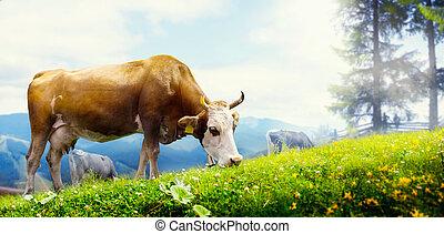 montanha, arte, prado, vaca, pastar