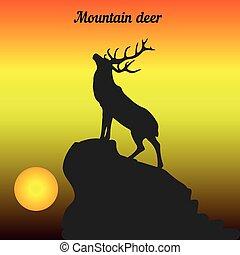 montanha, cabeça, seu, silueta, levantado, topo, veado, amanhecer