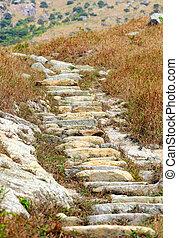 montanha, caminho hiking