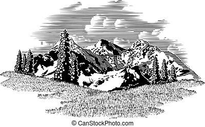 montanha, cena, alce