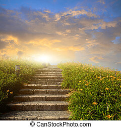 montanha, escada, flor, prado