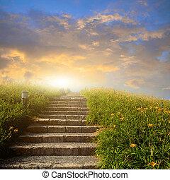 montanha, flor, prado, com, escada