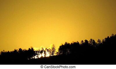 montanha, floresta, e, sol ascendente